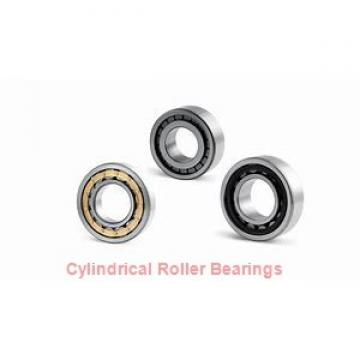 35 mm x 62 mm x 14 mm  KOYO N1007K cylindrical roller bearings