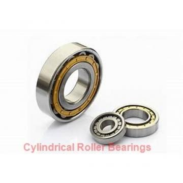 Toyana NJ19/670 cylindrical roller bearings