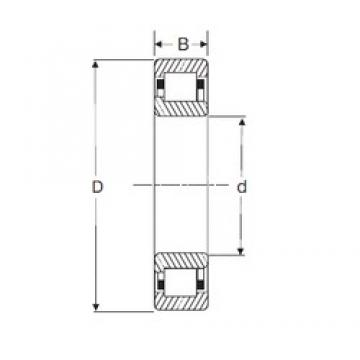 45 mm x 85 mm x 23 mm  SIGMA NJ 2209 cylindrical roller bearings
