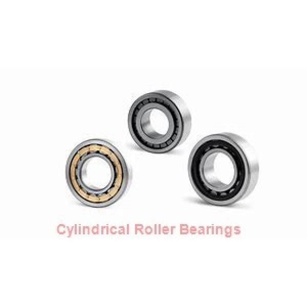 20 mm x 47 mm x 14 mm  ISB NU 204 cylindrical roller bearings #1 image